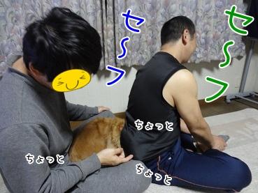 kinako3740.jpg