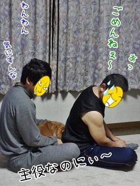 kinako3742.jpg