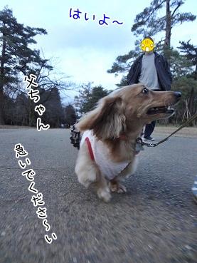 kinako3744.jpg