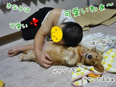 kinako3753.jpg