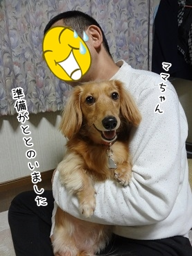 kinako3758.jpg