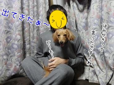 kinako3760.jpg