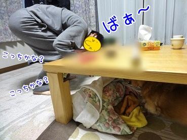 kinako3769.jpg