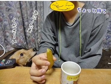 kinako3781.jpg