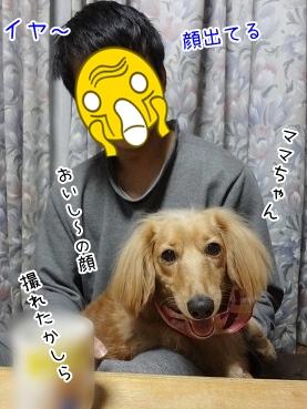 kinako3784.jpg