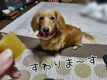 kinako3802.jpg