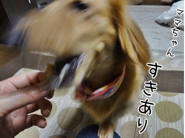 kinako3805.jpg