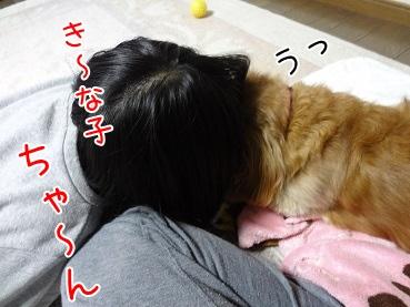 kinako3851.jpg