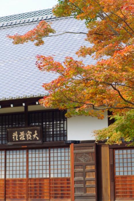 京都紅葉狩り (4)