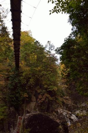 _仙樽の滝つり橋見上げるDSC_6787