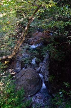 _仙樽の滝つり橋上からDSC_6796