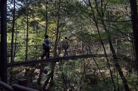 _仙樽の滝つり橋渡るDSC_6795