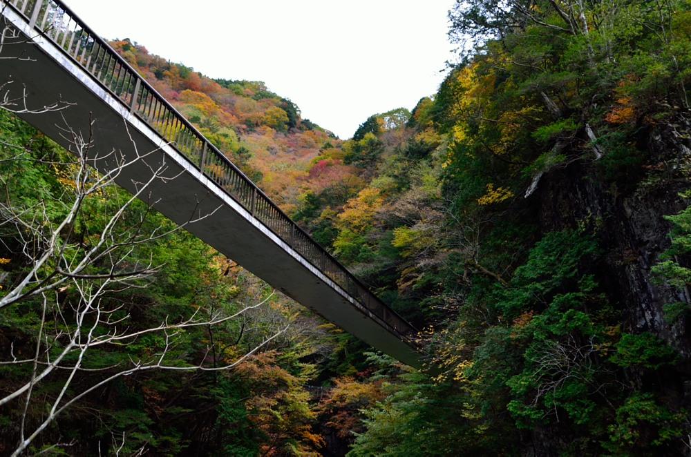_哀伝橋を見上げてDSC_7153