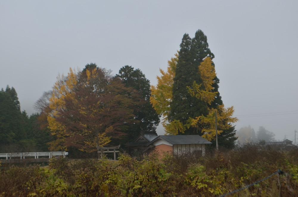 _霧林道から神社DSC_7378
