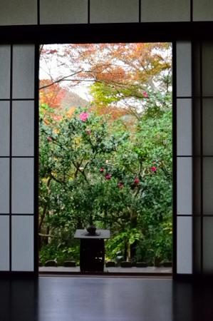 _窓DSC_8153