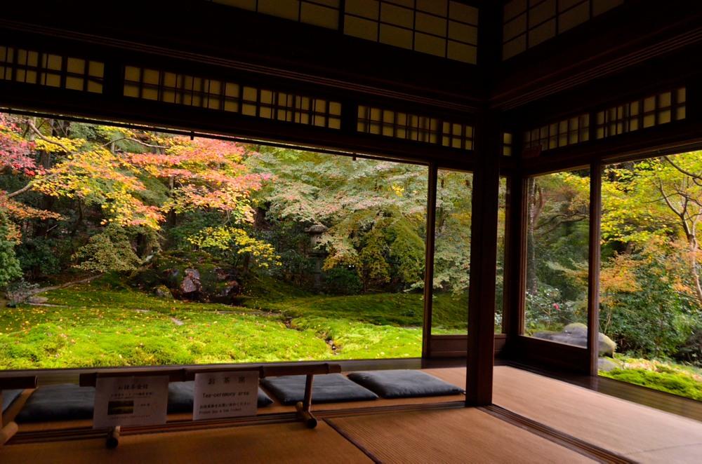 _瑠璃の庭座敷DSC_8043