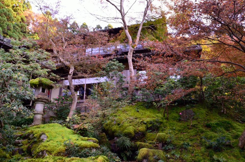 _山露路の庭DSC_8158
