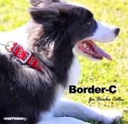 border_top_001 (1)
