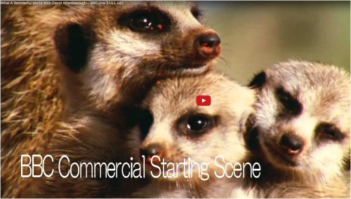 02b 500 20151114 予告 BBC Commercial