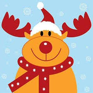 06 300 Rudolph