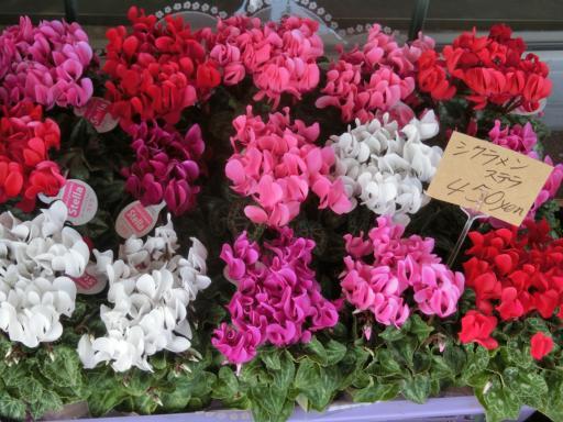 スーパーの花屋さん1