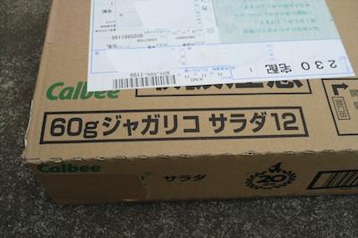 P1050689z.jpg