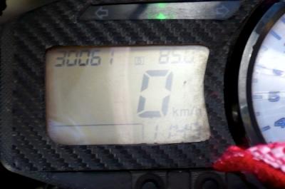 P1050893z.jpg