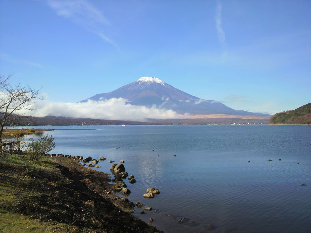 富士山(キララ11月16日)