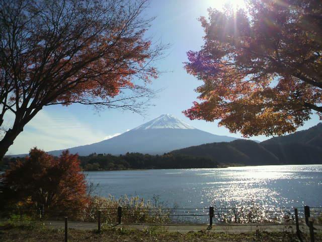 富士山(河口湖にて)