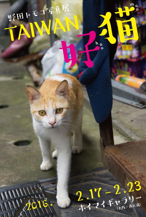 TAIWAN-haomao_DM_ura.jpg