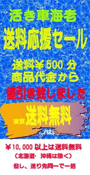 20151122ブログ 再告知告知ヤフータイトル