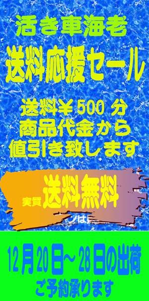 20151203車海老予約告知ブログ1