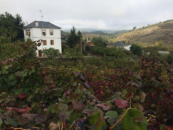 villafranca29.jpg