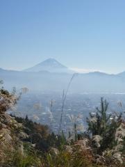 参道の途中からの富士山