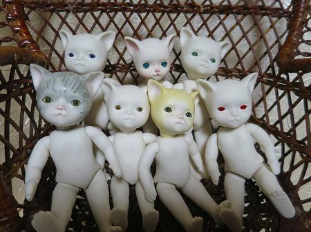 151106 7匹の子猫1