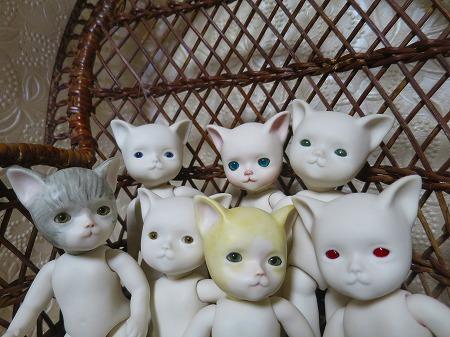 151106 7匹の子猫2