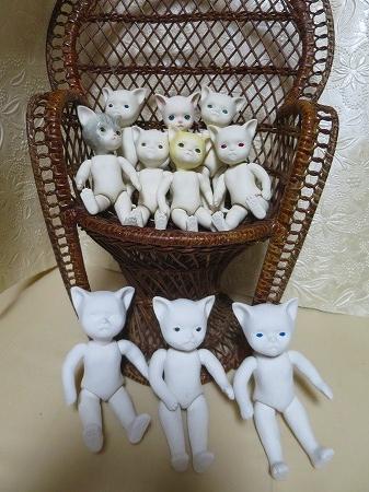 151106 子猫1