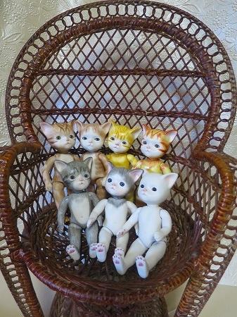 151204 七匹の子猫
