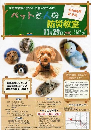 pet防災003