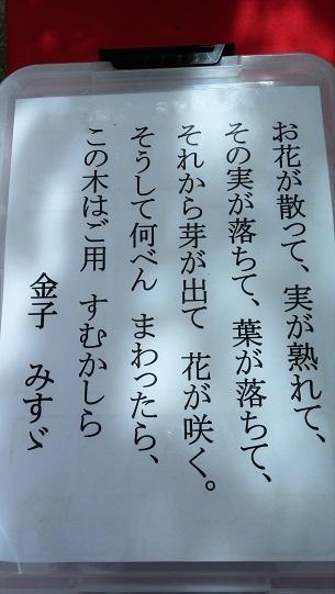 20151101_114647.jpg