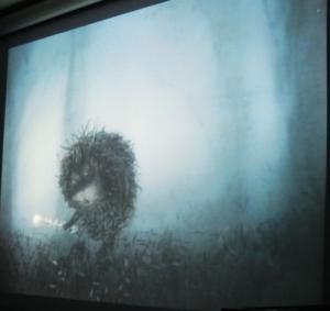 霧につつまれたハリネズミ