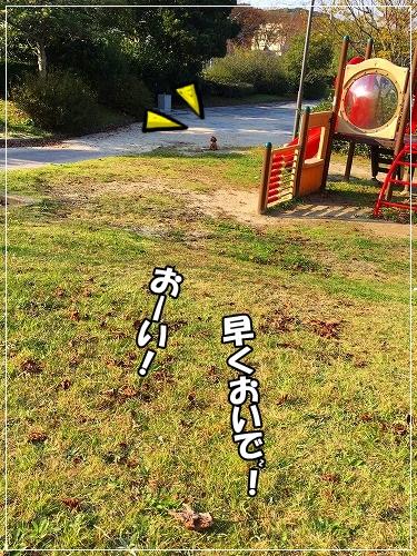 s-IMG_0311.jpg