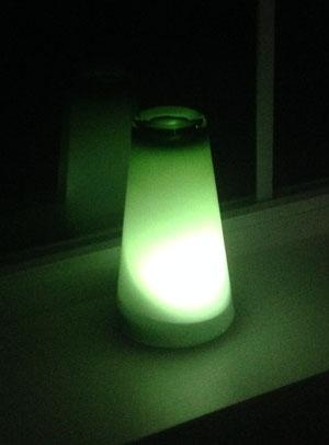 greenlightvet5.jpg