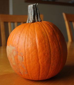 halloween1501.jpg