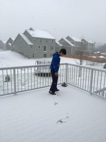 snow11161501.jpg