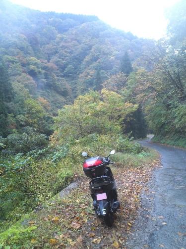 揖斐川川上り 林道塚線