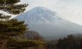 ゆらり富士