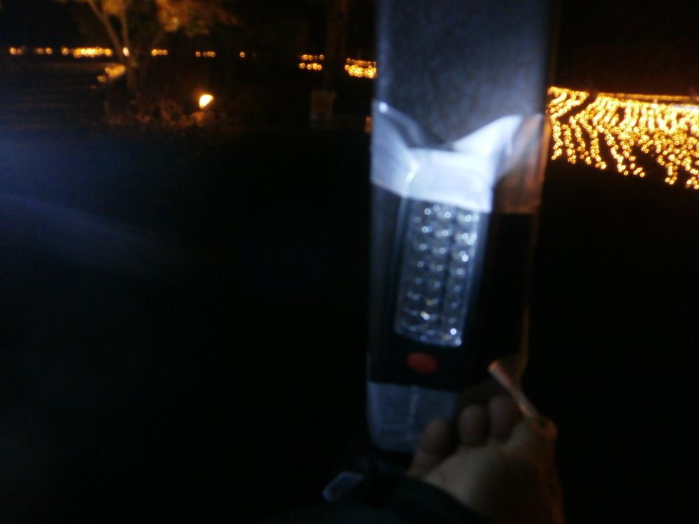 ライトPB210063-1