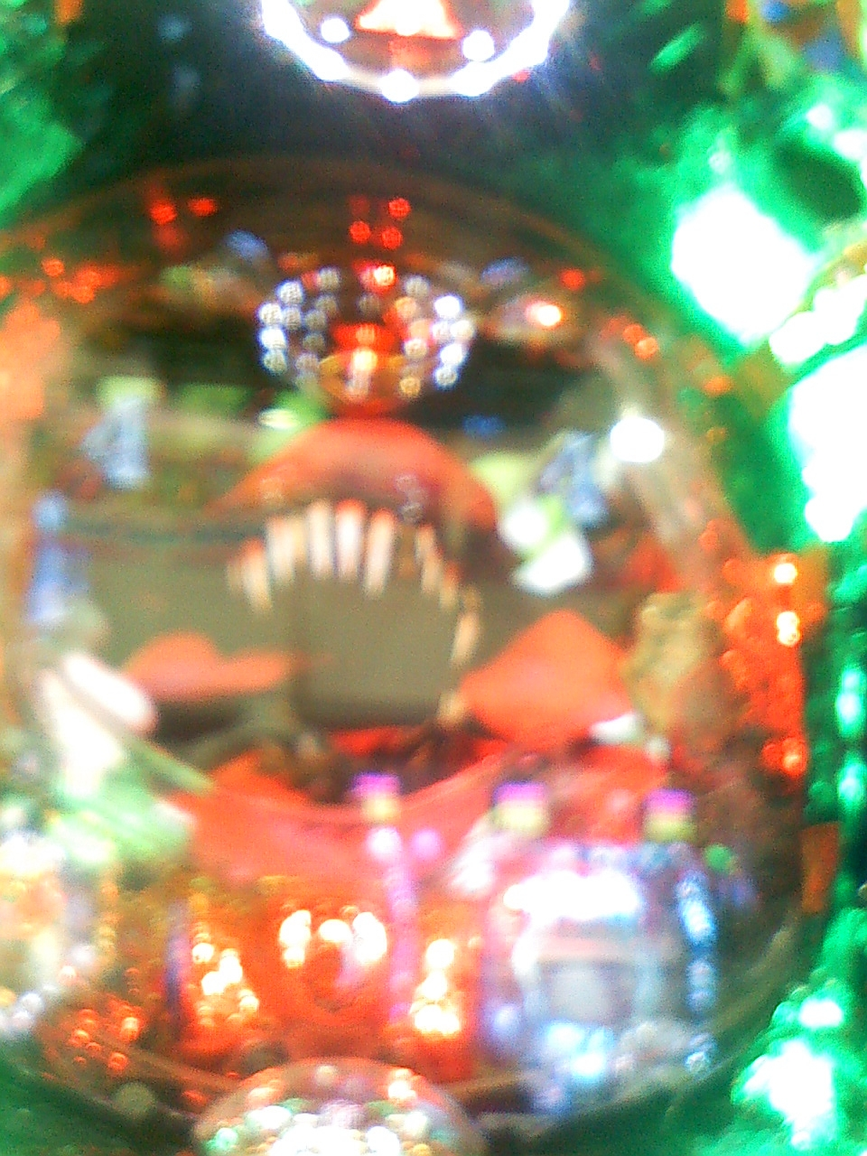 Image970.jpg