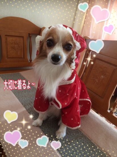 fc2blog_20151105211954a42.jpg